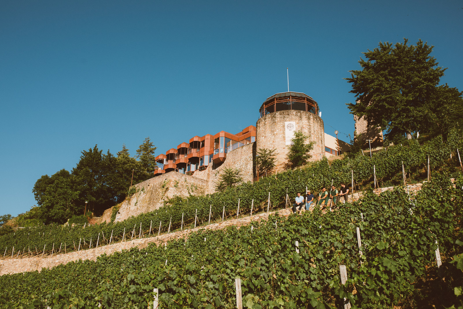 Trockenmauer-Bad-Kreuznach